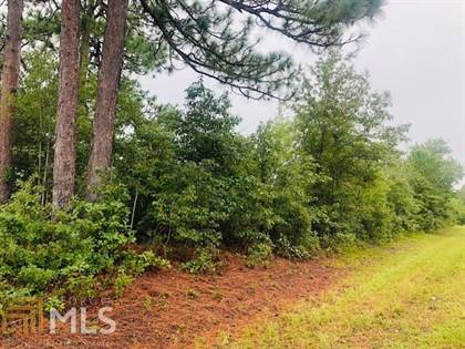 Farm And Agriculture for sale in 0 Mt Olive Rd, Millen, GA, 30442