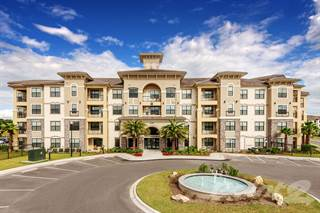 Apartment for rent in Bonterra Parc - A1, Wesley Chapel, FL, 33544