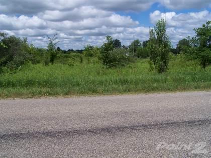 Lots/Land for sale in V/L N Cochran Road, Charlotte, MI, 48813