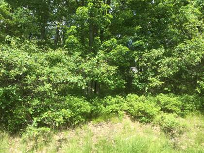 Lots And Land for sale in 110 Buttonbush Lane, Hazle Twp, PA, 18202