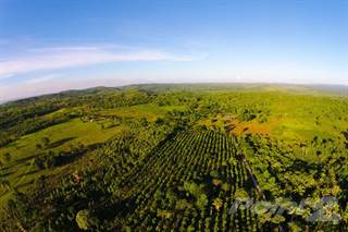 Farm And Agriculture for sale in Georgeville, Cayo, Belize