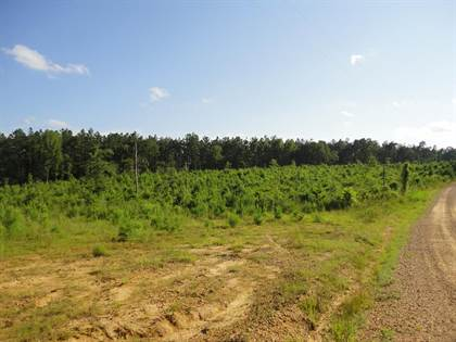 Lots And Land for sale in 0000 Durr Case Trail NW, Brookhaven, MS, 39601