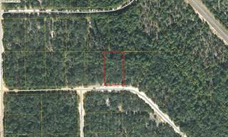 Land for rent in 0 GROVE Lane, Greater Alford, FL, 32448