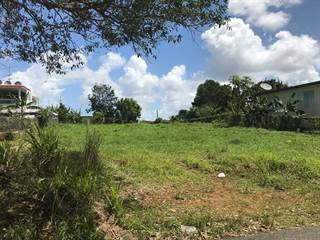 Single Family for sale in 0 ARENALES BAJOS, Isabela, PR, 00662