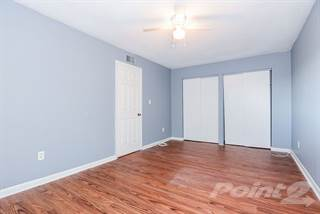 Apartment for rent in Palms at Ballast Point, Tampa, FL, 33611