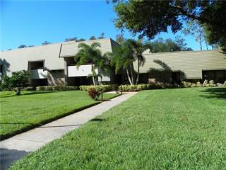 Residential Property for sale in 36750 US HIGHWAY 19 N 06206, Palm Harbor, FL, 34683