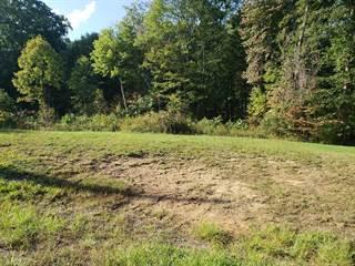 Land for sale in SIDNEY STREET, Beckley, WV, 25801