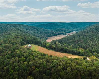Lots And Land for sale in 32315 County Road 325, Eminence, MO, 65466
