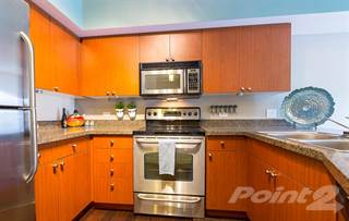 Apartment for rent in Neptune, Seattle, WA, 98109