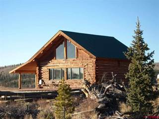 Single Family for sale in TBD Forest Road 3048, Powderhorn, CO, 81243
