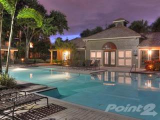 Apartment for rent in South Pointe Apartments - A1 - Premium Interior, Tampa, FL, 33611