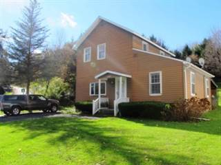 Single Family for sale in 3227 State Highway 166, Roseboom, NY, 13320