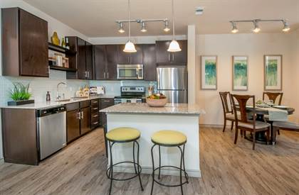 Apartment for rent in Highline, Austin, TX, 78727