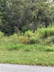 Land for sale in 000 Pinehurst, Spring Hill, FL, 34606