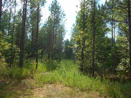 Lots And Land for sale in 0 CR 371, Water Valley, MS, 38965