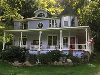 Single Family for sale in 16784 Gauley Turnpike Road, Ireland, WV, 26376