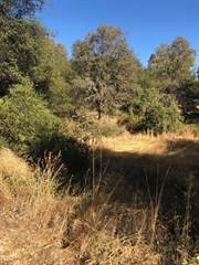 Residential Property for sale in 1074 Bridgeview DR, Placerville, CA, 95667