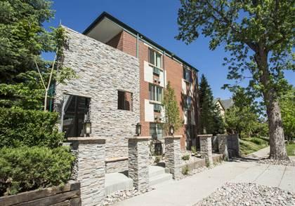 Apartment for rent in 1321 Detroit Street, Denver, CO, 80206