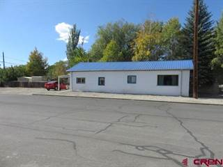 Single Family for sale in 800 Ninth Street, Alamosa, CO, 81101