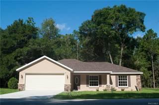 Single Family for sale in 3586 E Lake Todd Drive, Hernando, FL, 34442