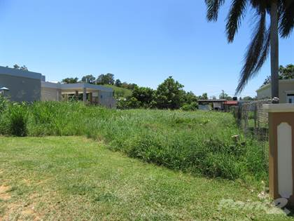 Lots And Land for sale in 486 interior, Camuy, PR, 00627