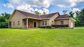 Single Family for sale in 24447 ADAIR AVENUE, Sorrento, FL, 32776