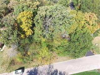 Land for sale in 1182 Deerpath Ct, Fox Lake, IL, 60020