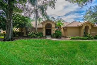 Single Family for sale in 17818 GREY BROOKE DRIVE, Tampa, FL, 33647