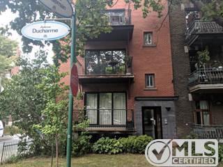 Residential Property for rent in 1397 Av. Ducharme, Outremont, Quebec, H2V1E7