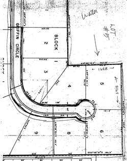 Lots And Land for sale in Lot # 5 Griffin Circle, Albany, TX, 76430