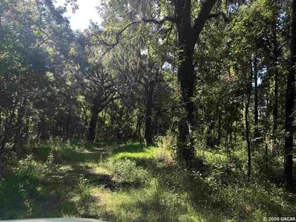 Farm And Agriculture for sale in TBD SE 11TH Street, Lake Butler, FL, 32054