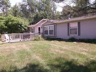 Single Family for sale in 981 WEBER ROAD, Gladwin, MI, 48624