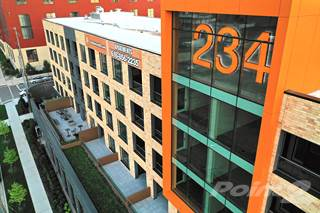 Apartment for rent in 234 Market Apartments - 1Bed 1Bath Style C - w/o Balcony, Grand Rapids, MI, 49503