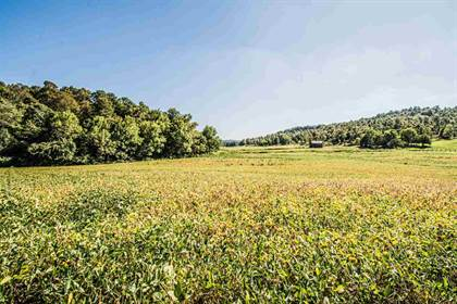 Lots And Land for sale in Tract 7 KY Highway 853, Greenville, KY, 42345