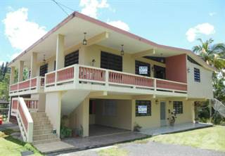Residential Property for sale in Bo Saltos Carr 445 Km 3.5 Interior San Sebastian PR, Salto, PR, 00685