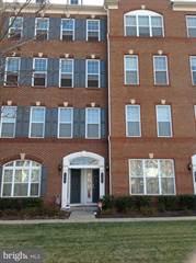 Single Family for rent in 43045 CLARKS MILL TERRACE, Ashburn, VA, 20148