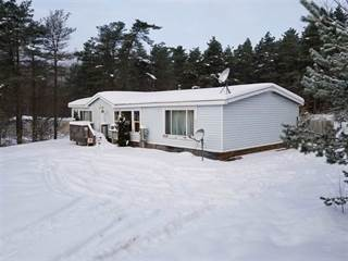 Single Family for sale in 2049 Evergreen, Alanson, MI, 49706
