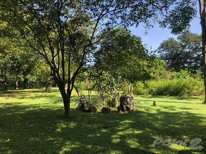 Farm And Agriculture for sale in Cattle farm in Nicoya, Nicoya Peninsula, Guanacaste
