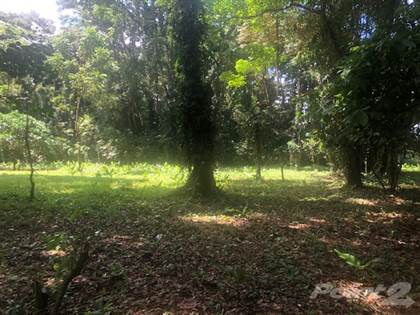 Lots And Land for sale in Fantastic New Project - Playa Negra, Puerto Viejo - 1/2 mile to beach!, Puerto Viejo, Limón