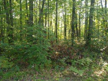 Lots And Land for sale in CADUCA LANE LOTS 491 & 492, Roscommon, MI, 48653