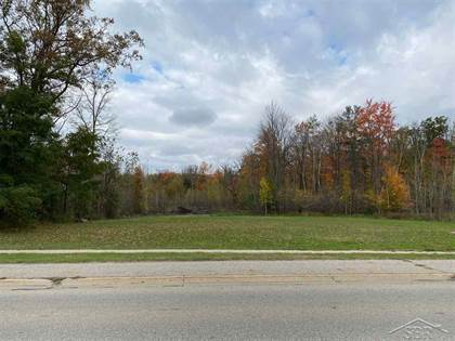 Lots And Land for sale in 463 E Isabella, Midland, MI, 48640