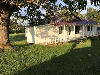 Single Family for sale in 4939 Judio Road, Burkesville, KY, 42717