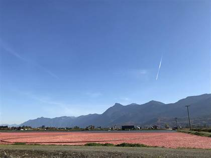 Agriculture for sale in 8450 GIBSON ROAD, Chilliwack, British Columbia, V2P6H3