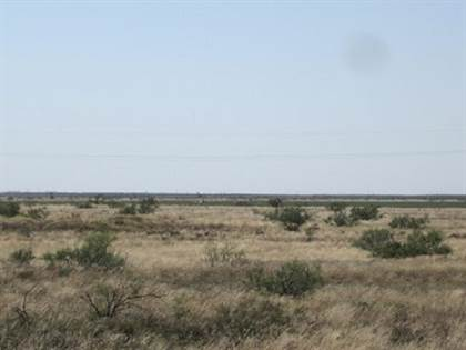 Farm And Agriculture for sale in Gaines County CRP 160.3 acres, Seminole, TX, 79360