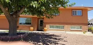 Single Family for sale in 10217 SINGAPORE Avenue, El Paso, TX, 79925
