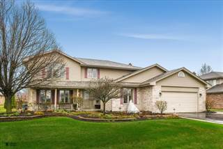 Single Family for sale in 8655 Wyman Drive, Tinley Park, IL, 60487