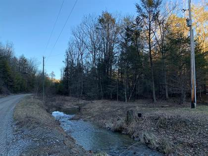 Lots And Land for sale in Tbd Millers Creek Road, Max Meadows, VA, 24360