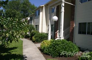 Apartment for rent in Redwood Terrace - 1 Bedroom 1 Bathroom, Greater Canby, OR, 97013