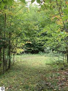 Lots And Land for sale in 4909 and 4953 Outer Drive, Grawn, MI, 49637