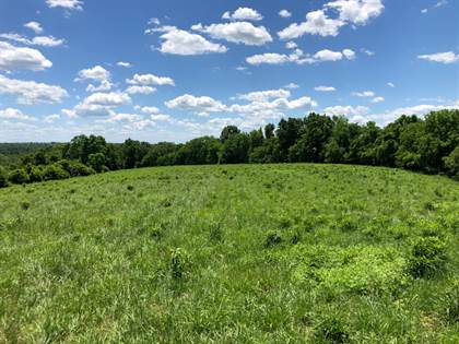 Farm And Agriculture for sale in 7100 Old Boonesboro Road, Winchester, KY, 40391